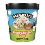 Ben & Jerry's Peanut Butter Cup Ice Cream