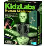 Kidz Labs - Human Skeleton 8 +