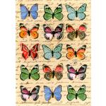 Hand Finished Butterflies Blank Card