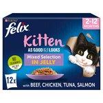 Felix As Good As It Looks Kitten Mixed in Jelly