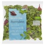Tenderleaf Salad Waitrose