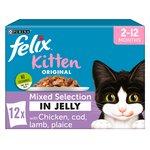 Felix Kitten Mixed Selection in Jelly